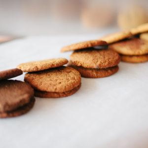 paleo coconut flour cookies