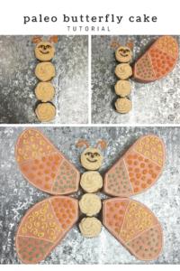 paleo-butterfly-cake